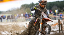Video: Avrie Berry VLM Lommel vlog