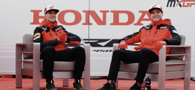 Video: HRC-How well do you know your teammate